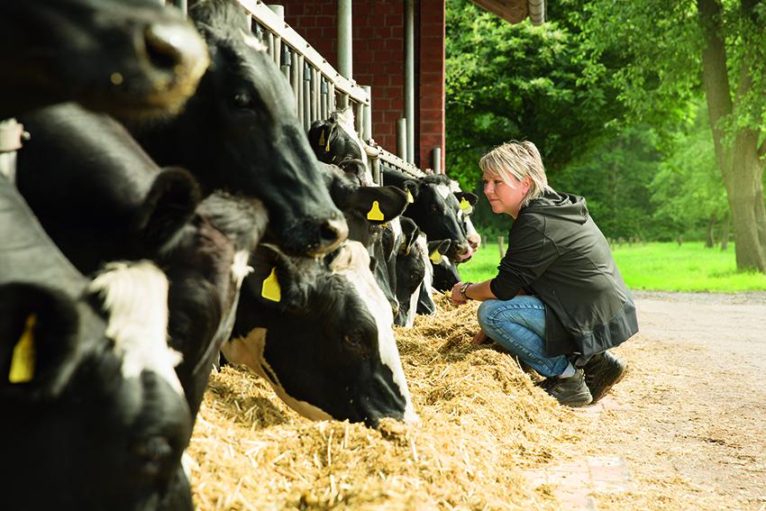 Емкостное измерение уровня в миксерах для производства кормов для животных